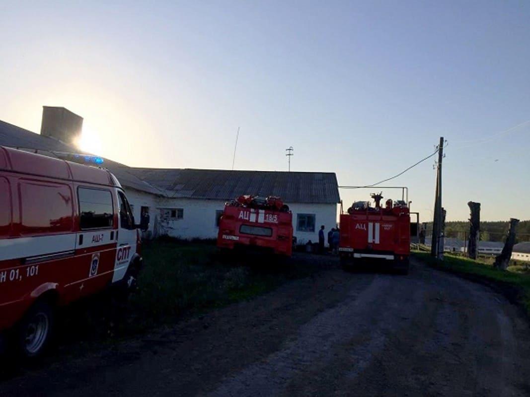 пожар на территории животноводческого комплекса в селе Курьи