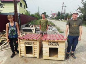 Будки для бездомной братии
