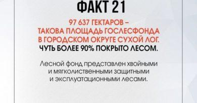 90 фактов о Сухоложье: факт 21