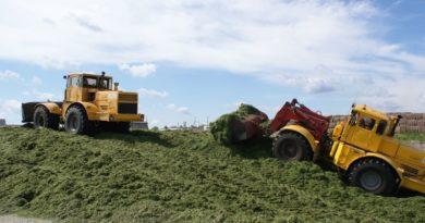 Заготовка кормов в Сухом Логу