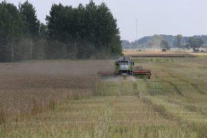 аграрии приступили к уборке урожая