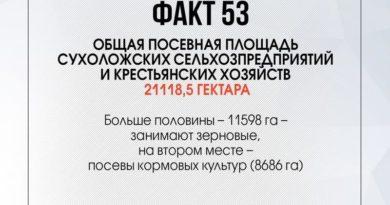 90 фактов о Сухоложье:акт 53