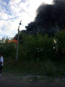 Пожар в Курьях