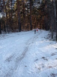 В Сухом Логу соревноваяния по лыжным гонкам