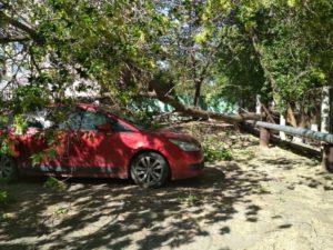 последствия урагана 1