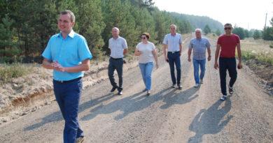 Комиссия идет по дороге на ул. Лесной