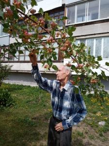 Владимир Сергеевич обходит «свои» зеленые владения рядом с выстроенной им 5-этажкой, в которой живет, 2021 г.