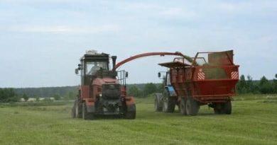 заготовка кормов и уборка урожая